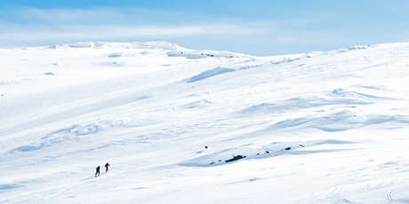 crosscountry_skiing_in_Lapland2